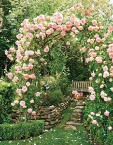 pinkrosearchway